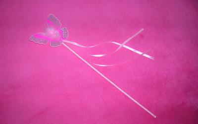 The magical wand to manifest your dreams